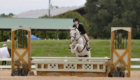 Blue Strutter_Carolina Country Acres_Lease Horse