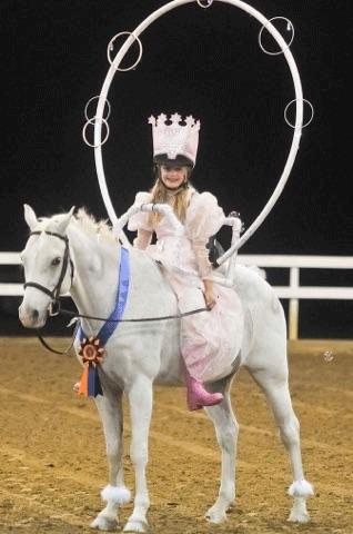 Blue Strutter_Carolina Country Acres_Lease Horse