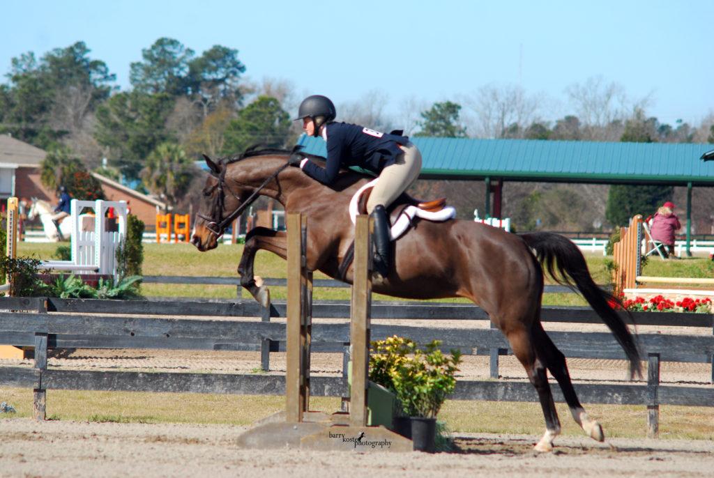 Portia Horse Show Leases