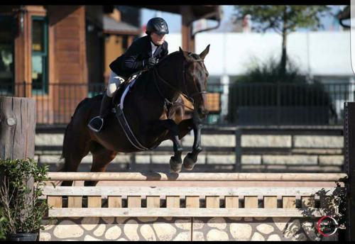 Malachi_Horse Show Leases
