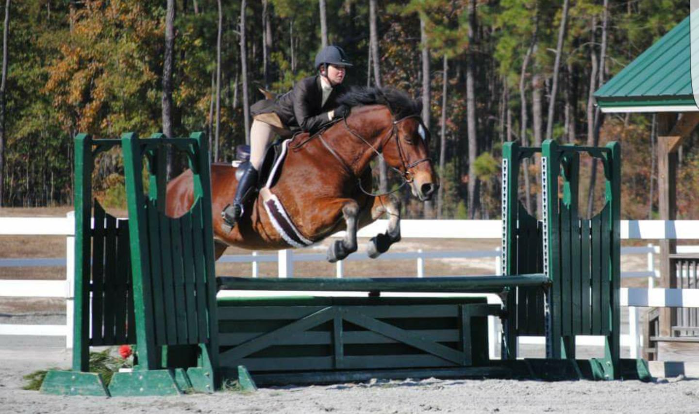 TravlerBud_HorseShowLeases