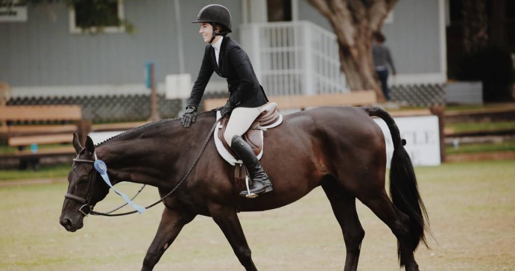 Usef pony finals