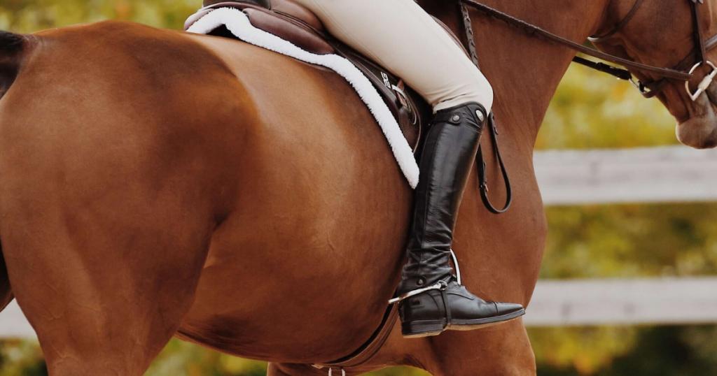 Equitation Rider