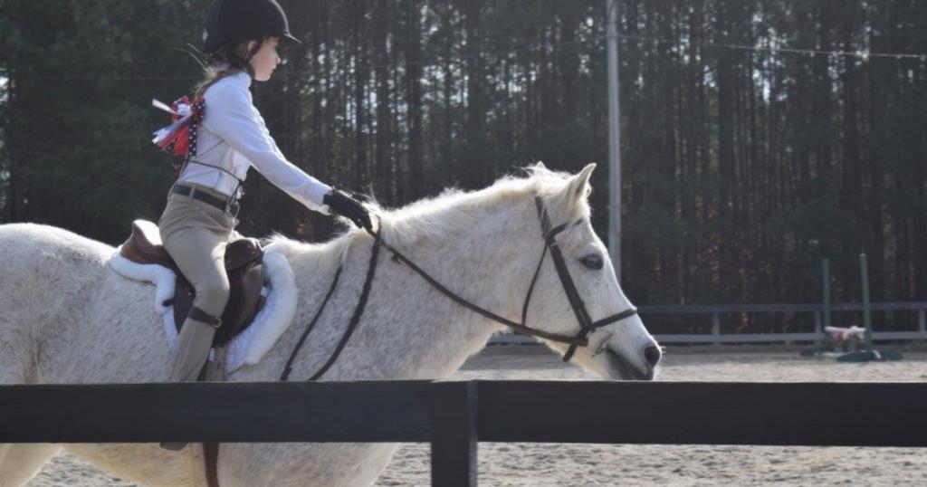 beginner riders